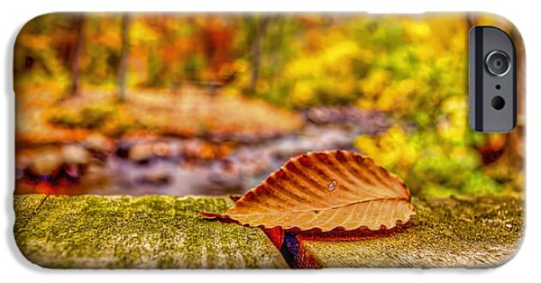 Mist iPhone Cases - Autumn peak in Ringwood New Jersey iPhone Case by Geraldine Scull