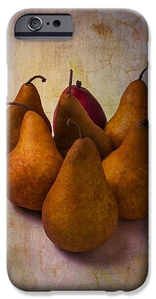 Pears iPhone Cases - Autumn Pears iPhone Case by Garry Gay