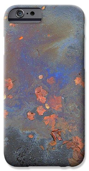 John Stewart iPhone Cases - Autumn Puddle iPhone Case by John Norman Stewart