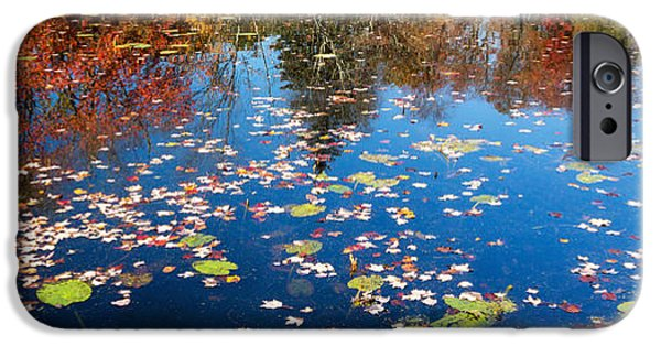 Lilly Pads iPhone Cases - Autumn Reflections iPhone Case by Bill  Wakeley