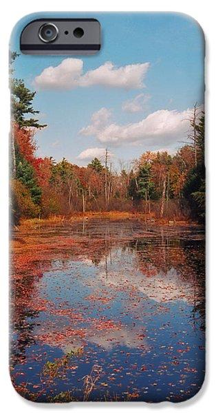 Autumn Reflections iPhone Case by Joann Vitali
