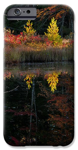 Autumn Reflections - Red Eagle Pond iPhone Case by Thomas Schoeller