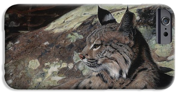 Bobcats Paintings iPhone Cases - Autumn Rest iPhone Case by Pat Gilmore