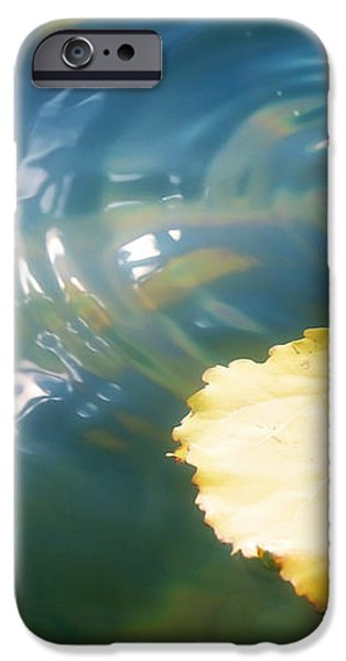 Autumn Ripples iPhone Case by Lisa Knechtel