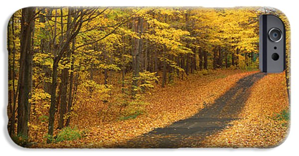 Autumn Road iPhone Cases - Autumn Road, Emery Park, New York iPhone Case by Panoramic Images