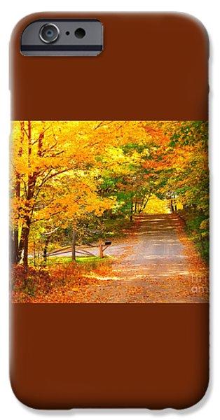Autumn Road Home iPhone Case by Terri Gostola