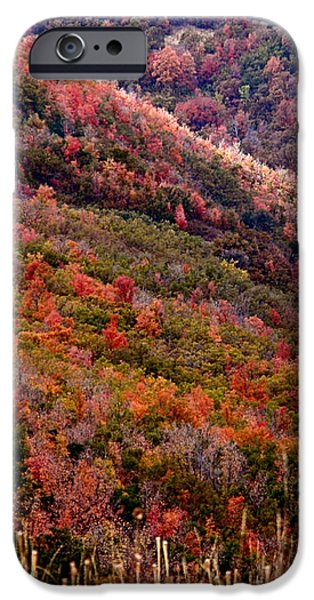 Autumn iPhone Case by Rona Black