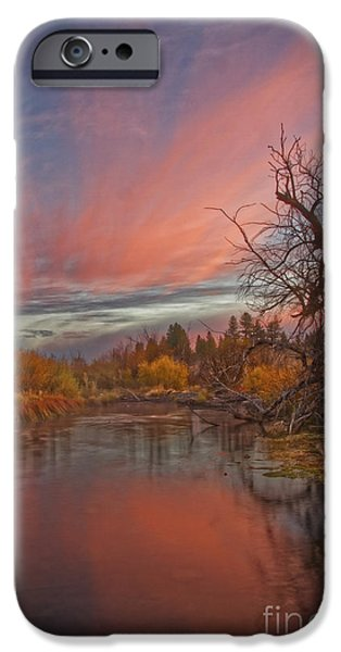 Willow Lake iPhone Cases - Autumn Sky iPhone Case by Mitch Shindelbower