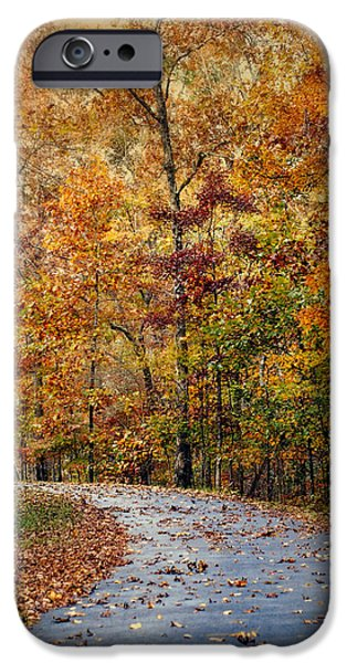 Autumn Scenes iPhone Cases - Autumn Splash - Fall Landscape iPhone Case by Jai Johnson