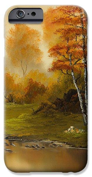 C Steele iPhone Cases - Autumn Splendor iPhone Case by C Steele