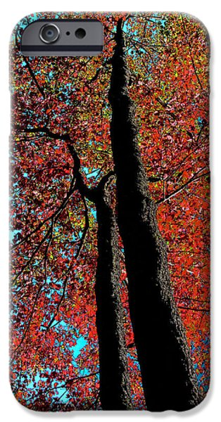 Surreal Landscape iPhone Cases - Autumn Splendor iPhone Case by David Patterson