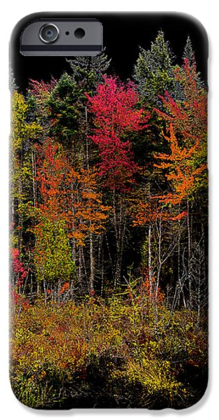 Surreal Landscape iPhone Cases - Autumn Splendor in the Adirondacks iPhone Case by David Patterson