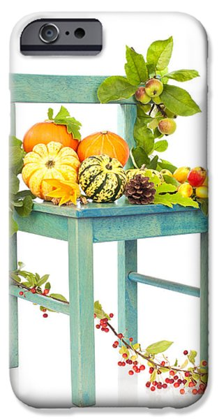 Apple Orchard iPhone Cases - Autumn Still Life Chair iPhone Case by Amanda And Christopher Elwell