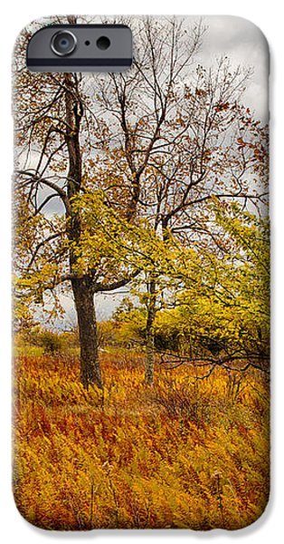 Autumn Storm at Dolly Sods West Virginia I iPhone Case by Dan Carmichael