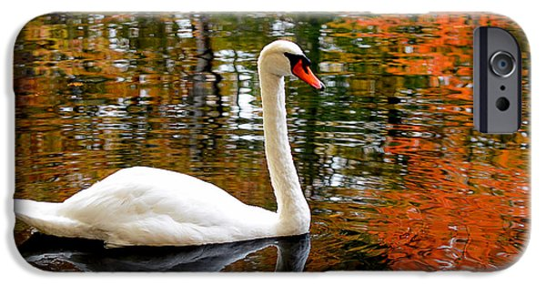 Swan iPhone Cases - Autumn Swan iPhone Case by Lourry Legarde