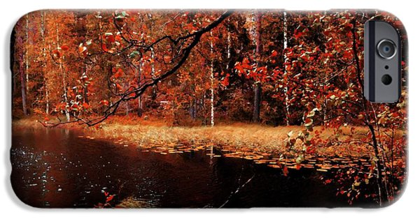 Autumn Landscape Pyrography iPhone Cases - Autumn iPhone Case by Tamara Al Bahri