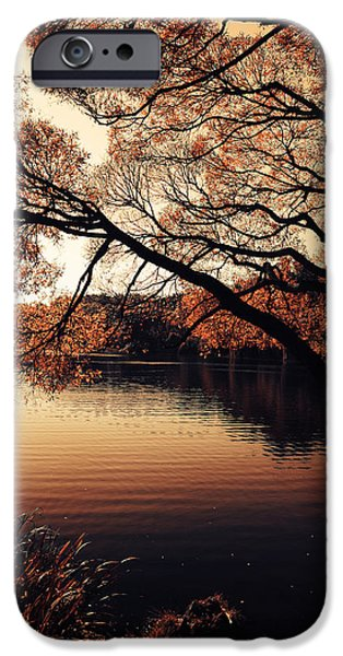 Willow Lake iPhone Cases - Autumn Time at the Lake iPhone Case by Jenny Rainbow
