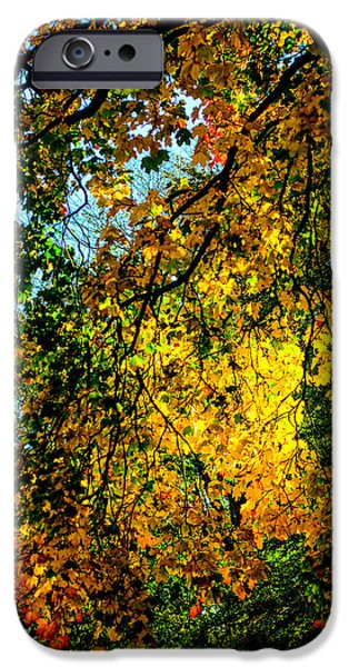 Park Scene Mixed Media iPhone Cases - Autumn tree  iPhone Case by Toppart Sweden