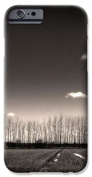 autumn trees iPhone Case by Stylianos Kleanthous