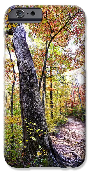 Oak Creek iPhone Cases - Autumn Umbrella iPhone Case by Debra and Dave Vanderlaan