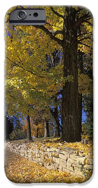 Indiana Autumn iPhone Cases - Autumn Wall - FM000082 iPhone Case by Daniel Dempster