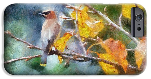 Leaves iPhone Cases - Autumn Waxwing iPhone Case by Kerri Farley