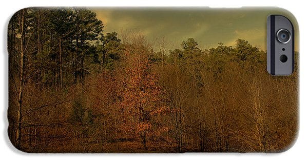 Forest iPhone Cases - Autumn Whispers iPhone Case by Nina Fosdick