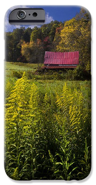 Red Roofed Barn iPhone Cases - Autumn Wildflowers iPhone Case by Debra and Dave Vanderlaan