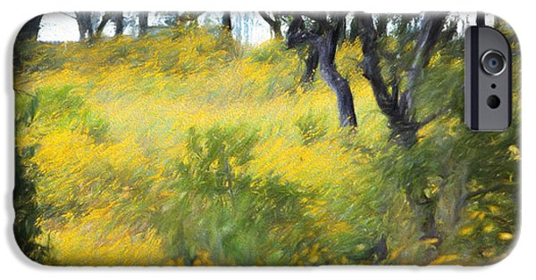 Nature Scene iPhone Cases - Autumn Wildflowers in Woods iPhone Case by Linda Phelps