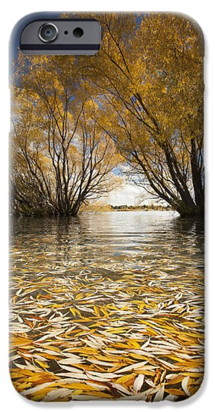 Willow Lake iPhone Cases - Autumn Willows Lake Tekapo New Zealand iPhone Case by Colin Monteath