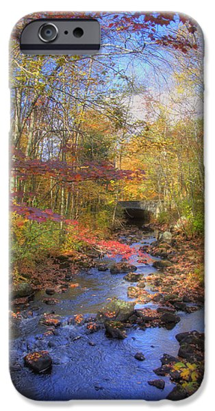 New England Autumn Scenes iPhone Cases - Autumn Woods iPhone Case by Joann Vitali