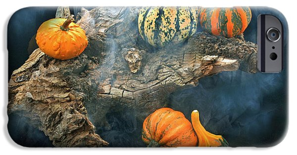 Tree Roots iPhone Cases - Autumnal 2 iPhone Case by Manfred Lutzius
