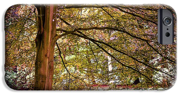 Garden Scene Photographs iPhone Cases - Autumnal Colors in the Summer Time. De Haar Castle Park iPhone Case by Jenny Rainbow