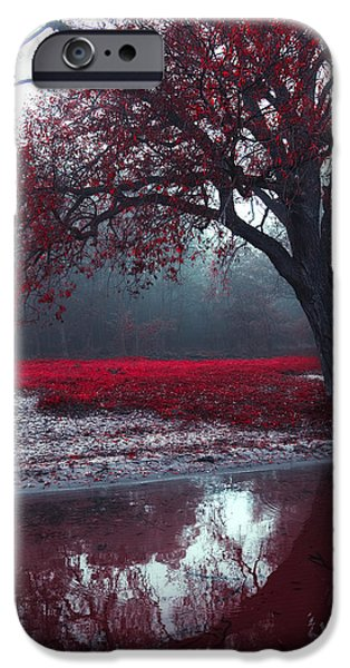 Creepy iPhone Cases - Autumnal park iPhone Case by Joanna Jankowska