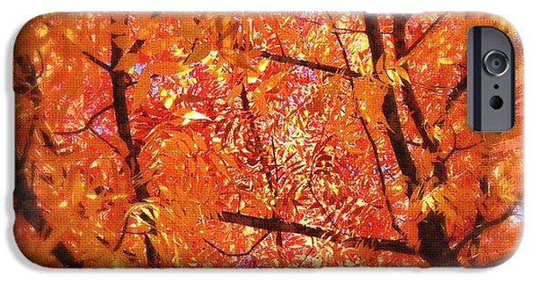 Fall iPhone Cases - Autumns Array 3 iPhone Case by Penelope Moore