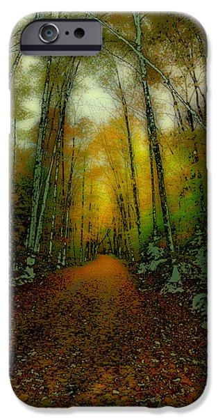 Surreal Landscape iPhone Cases - Autumns Back Roads iPhone Case by David Patterson