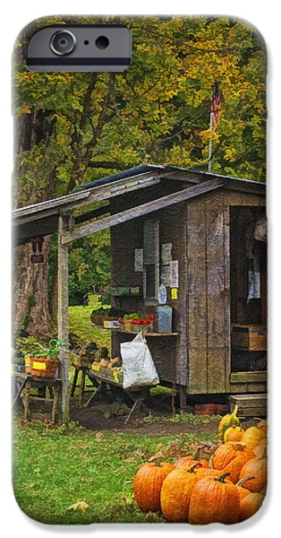 Farm Stand iPhone Cases - Autumns Bounty iPhone Case by Priscilla Burgers