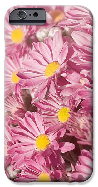 Pastel iPhone Cases - Autumns Flowers iPhone Case by Kim Hojnacki