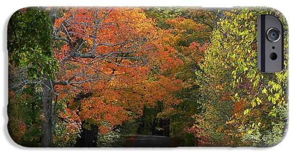 Recently Sold -  - Franklin iPhone Cases - Autumns Heavenly Color iPhone Case by Natalie LaRocque