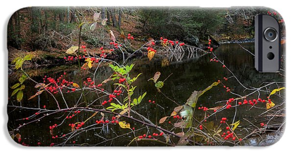 Litchfield County Landscape iPhone Cases - Autumns Last Stand Square iPhone Case by Bill  Wakeley