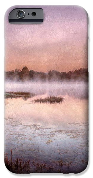 Autumns Light iPhone Case by Darren Fisher