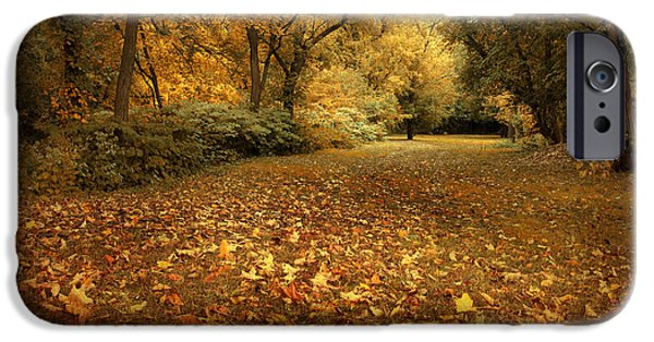 Autumn Woods iPhone Cases - Autumns Passage iPhone Case by Jessica Jenney