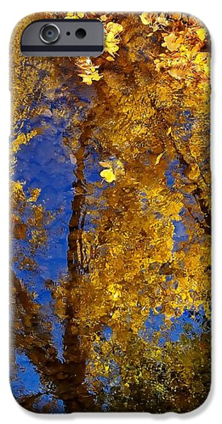Autumns Reflections iPhone Case by Steven Milner