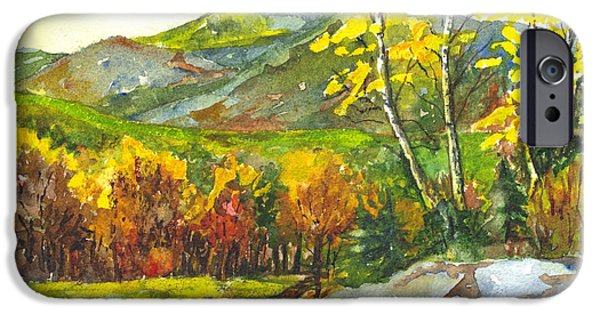 Fall Scenes Drawings iPhone Cases - Autumns Showpiece iPhone Case by Carol Wisniewski