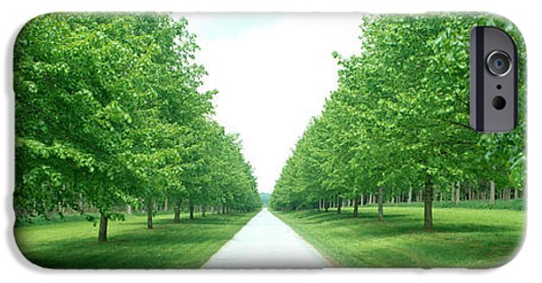 Pathway iPhone Cases - Avenue At Chateau De Modave Ardennes iPhone Case by Panoramic Images