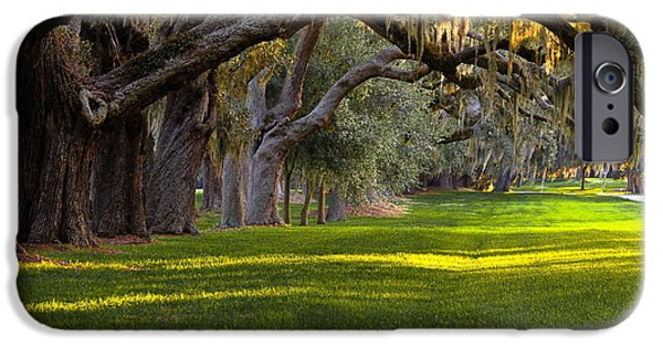 Constitution iPhone Cases - Avenue of the Oaks 2 on St Simons Island GA iPhone Case by Reid Callaway
