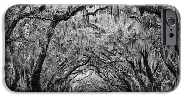 Recently Sold -  - Overhang iPhone Cases - Avenue of the Oaks Savannah iPhone Case by Keith Dotson
