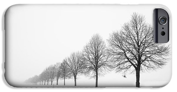 Snow Scene iPhone Cases - Avenue with row of trees in winter iPhone Case by Matthias Hauser