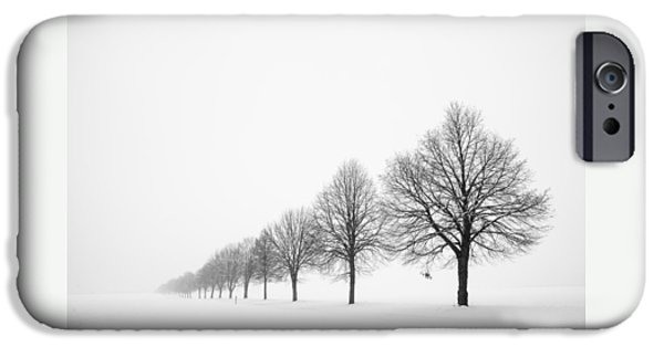 Deutschland iPhone Cases - Avenue with row of trees in winter iPhone Case by Matthias Hauser