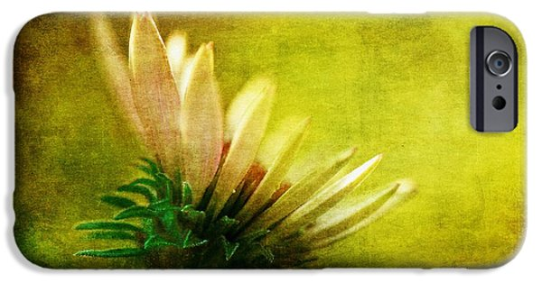 Daisy Bud iPhone Cases - Awakening iPhone Case by Lois Bryan